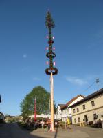 Blick auf den elzer Dorfplatz mit Maibaum
