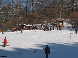 Dorfschirennen Elz